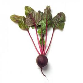 Семена свеклы Либеро Rijk Zwaan от 3 г, Фасовка: Мини упаковка 3 г