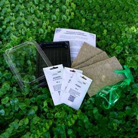 """Набор для выращивания микрозелени """"Ароматный сет"""""""
