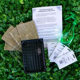 """Набор для выращивания микрозелени """"Стартовый"""""""