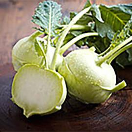 Насіння капусти кольрабі Сніжана Nasko від 500 шт, Фасовка: Проф упаковка 500 шт
