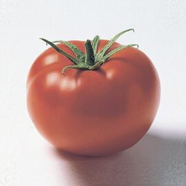 Насіння томату детермінантного Джем F1 Ergon від 100 шт, Фасовка: Проф упаковка 100 шт
