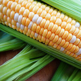 Семена кукурузы сахарной Мраморная F1 Мнагор от 5 г, Фасовка: Проф упаковка 5 г