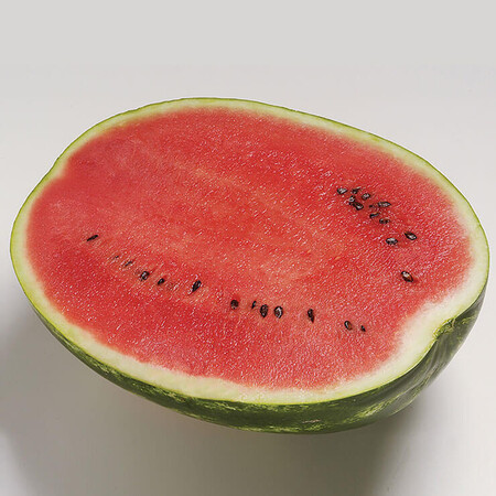 Семена арбуза Топ Ган F1 Syngenta от 10 шт, Фасовка: Мини упаковка 10 шт