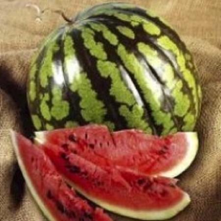 Семена арбуза Кримсон Свит United Genetics 500 гр