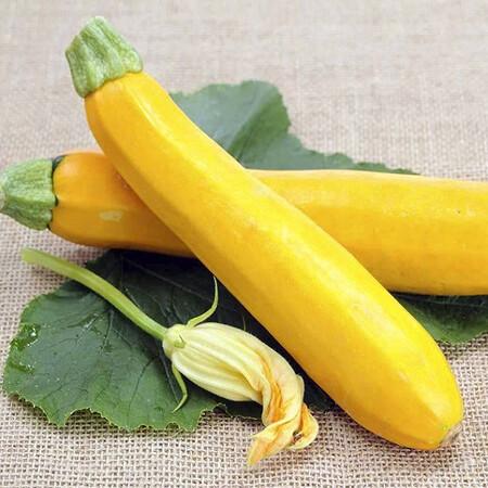 Семена кабачка Мери Голд F1 Dorsing Seeds  250 гр