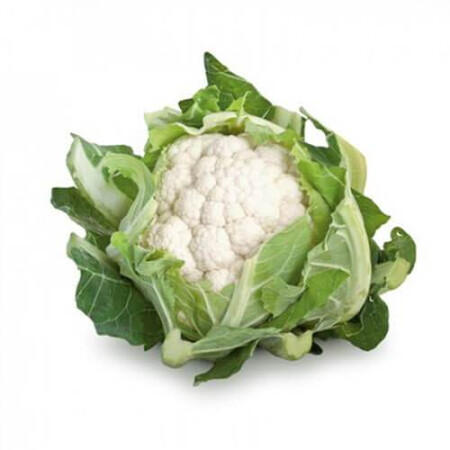 Семена капусты цветной Сантамария F1 Rijk Zwaan от 20 шт, Фасовка: Мини упаковка 20 шт