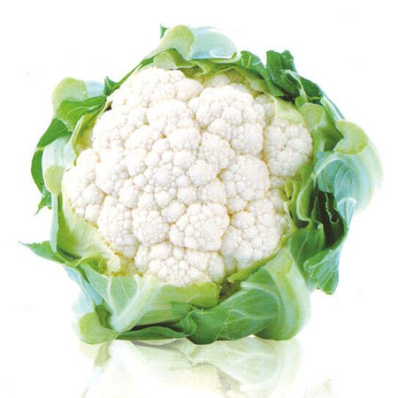 Семена капусты цветной Уайт Эксель F1 Sakata 1 000 шт, Фасовка: Проф упаковка 1 000 шт