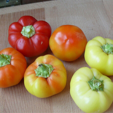 Семена перца Мела Роса F1 Lark Seeds 500 шт, Фасовка: Проф упаковка 500 шт
