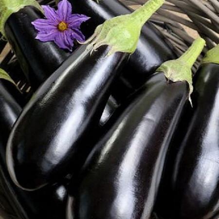 Семена баклажана Надир Nasko от 1 000 шт, Фасовка: Проф упаковка 1 000 шт