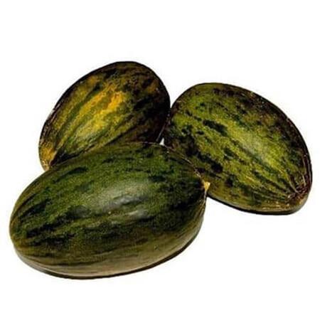 Семена дыни Пьель де Сапо Hortus от 50 г, Фасовка: Проф упаковка 50 г