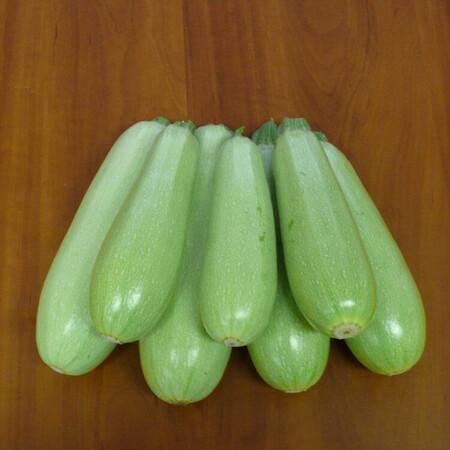 Семена кабачка Немо F1 Lark Seeds 2 500 шт, Фасовка: Проф упаковка 2 500 шт