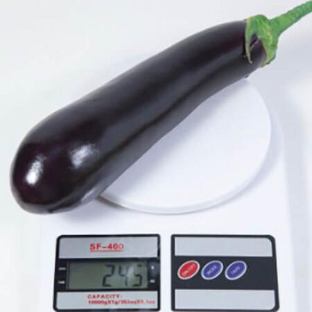 Насіння баклажана КС 4804 F1 Kitano Seeds від 250 шт, Фасовка: Проф упаковка 250 шт