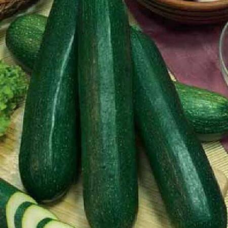 Насіння кабачка Грін темно-зеленого Hortus від 50 г, Фасовка: Проф упаковка 50 г