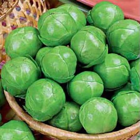 Семена капусты брюсельская Геркулес Hortus 100 г, Фасовка: Проф упаковка 100 г