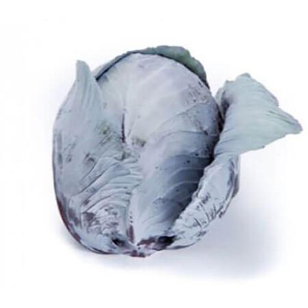 Семена капусты к/к Редма F1 Rijk Zwaan от 1 000 шт (калибр.), Фасовка: Проф упаковка 1 000 шт (калибр)