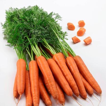 Насіння моркви Титан F1 Lark Seeds 250 000 шт (2,0-2,4), Фасовка: Проф упаковка 250 000 шт (2,0-2,4)