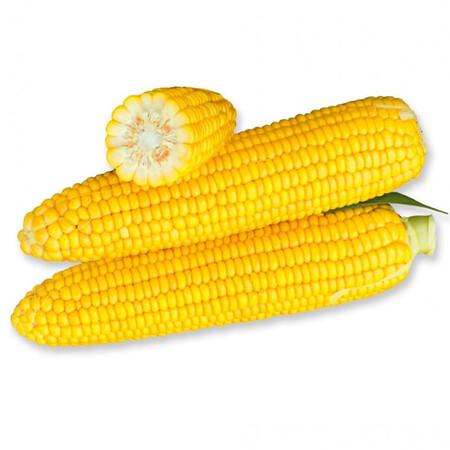 Насіння кукурудзи цукрової Уокер F1 Lark Seeds 2 500 шт, Фасовка: Проф упаковка 2 500 шт