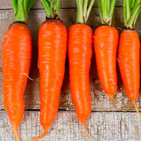 Насіння моркви 1932 F1 Lark Seeds 25 000 шт (1,8-2,0), Фасовка: Проф упаковка 25 000 шт (1,8 - 2,0)